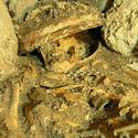 Post Thumbnail of Los 10 mayores hallazgos arqueológicos del 2011