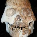 Post Thumbnail of Los fósiles que sugieren que existió otra especie humana