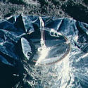 Post Thumbnail of El núcleo de la Luna es similar al de nuestro planeta