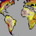 Post Thumbnail of Gran parte de la Tierra será inhabitable en 2100 debido al calentamiento global