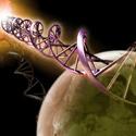 Post Thumbnail of Empieza la carrera para encontrar ADN en Marte