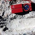 Post thumbnail of Descubrieron cinco huellas humanas de 25 mil años de antigüedad en México