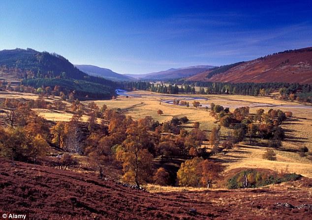 El calendario ancestral fue hallado en un campo cercano a Banchory en Aberdeenshire, y tendría 10,000 años de antigüedad.