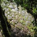 Post Thumbnail of Encuentran en las selvas de Ecuador la 'Ciudad Perdida de los Gigantes'