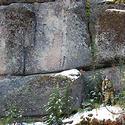 Post thumbnail of Ruinas megalíticas en Rusia podrían contener los bloques de piedra más grandes jamás hallados