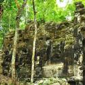 Post Thumbnail of Arqueólogos hallan dos ciudades mayas perdidas en plena jungla