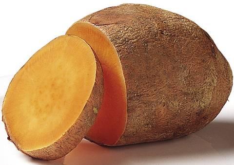 Ipomoea batatas, llamada comúnmente boniato, batata (del taino), chaco, papa dulce o camote (del náhuatl camohtli), es una planta de la familia Convolvulaceae, cultivada en gran parte del mundo por su raíz tuberosa comestible.