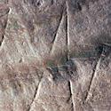 Post Thumbnail of La obra de arte más antigua tiene 540,000 años de antigüedad