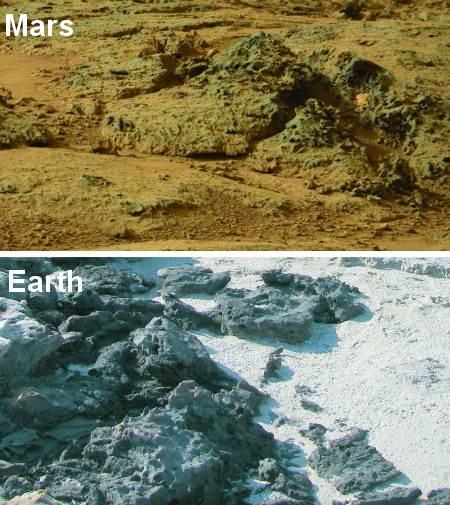 Estructuras protuberantes en Marte comparadas con formaciones similares producto de la erosión de alfombras microbianas en Carbla Point, Australia Occidental.