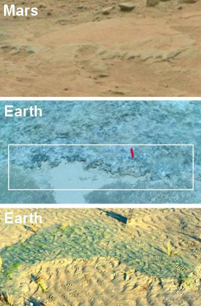Potencial erosión microbiana en Marte (arriba); remanentes de alfombra microbiana en Portsmouth Island, EE.UU. (medio) y Mellum Island, Alemania (abajo).