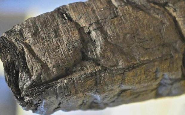 Descifran palabras de pergaminos calcinados por el Vesubio