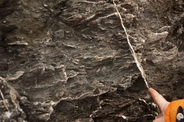 Una de las tantas venas de aragonita halladas en la roca.