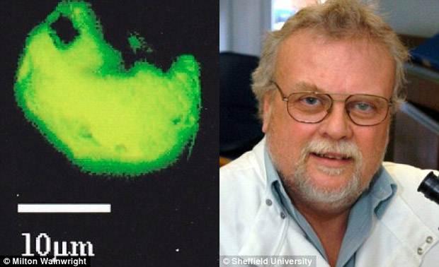 Dr Milton Wainwright (derecha). Una de las partículas analizadas (izquierda).