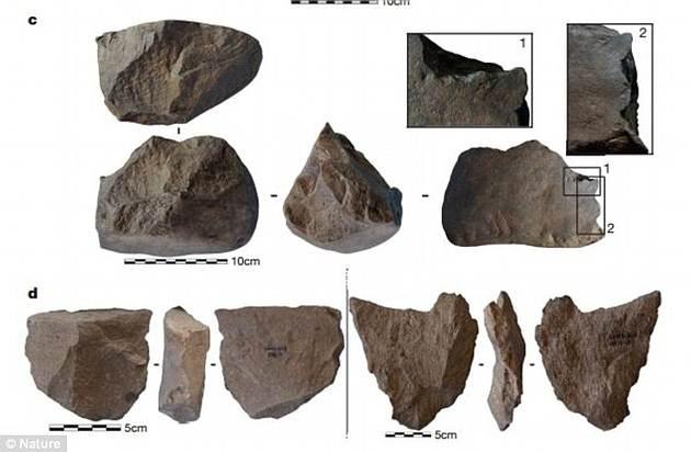 Qui n hizo las herramientas m s antiguas del mundo - Herramientas de campo antiguas ...