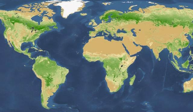 Las mayores densidades de árboles se encuentran en los bosques boreales en las regiones subárticas de Rusia, Escandinavia y América del Norte. No obstante, las áreas forestales más grandes, por el momento, están en los trópicos, que son el hogar de alrededor del 43 por ciento de los árboles del mundo.