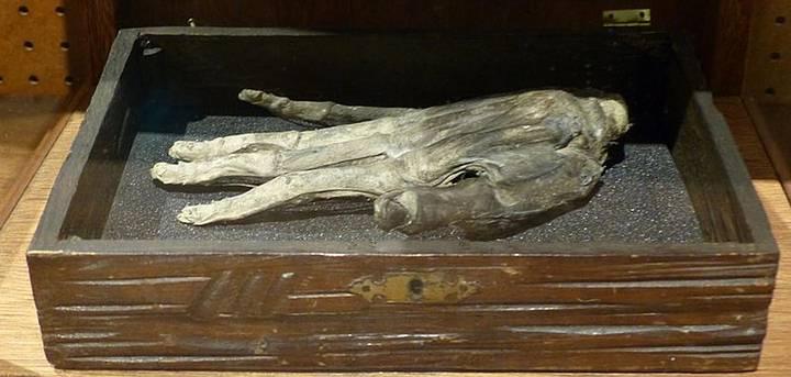 Mano de la Gloria, Museo Whitby, Inglaterra.