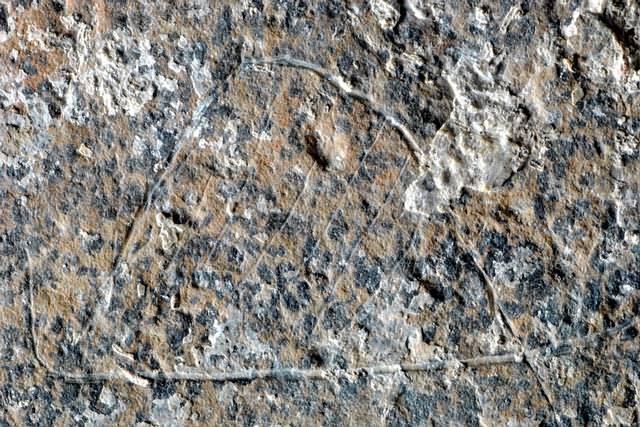 moli-del-salt1