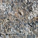 Post thumbnail of Un campamento de cazadores grabado en piedra hace más de 13.000 años
