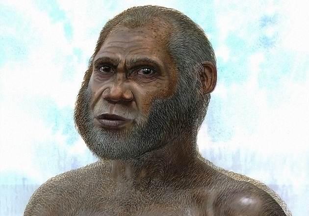 Interpretación artística de la apariencia de un Hombre de la Cueva del Ciervo Rojo (Peter Schouten).