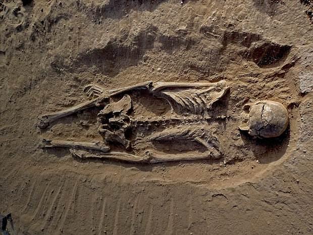 Muchas de las víctimas fueron encontradas boca abajo, probablemente en la posición que cayeron cuando fueron asesinados.