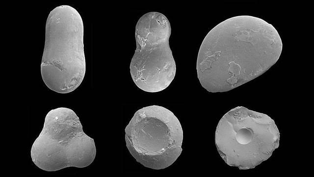 fragmentos-esferulitas