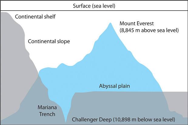 Comparación entre el Everest y la Fosa de las Marianas.