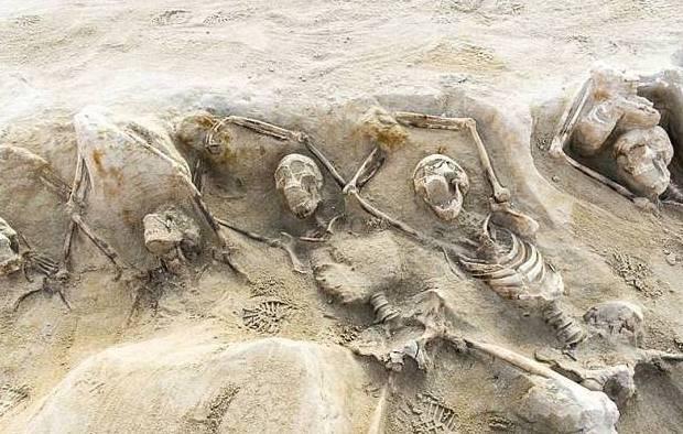 Hasta ahora se encontraron 80 esqueletos.