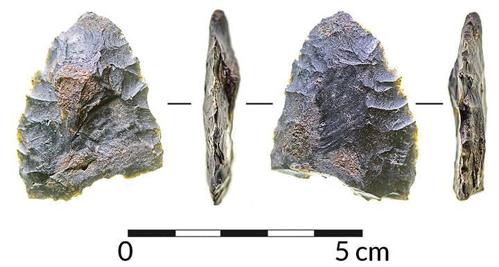 La excavación en un yacimiento sumergido en Florida encontró evidencia —incluyendo el artefacto de piedra que se muestran en la foto— de una población que habitó esa zona hace 14.550 años.