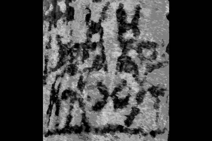 Esta imagen mejorada de la piel de la momia revela tatuajes de dos vacas.