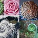 Post Thumbnail of La Espiral: Arquetipo esencial de nuestra psique