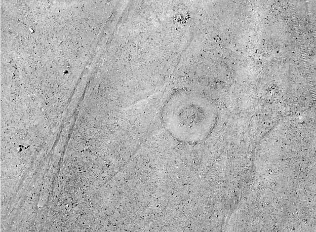 peru-geoglyphs-2