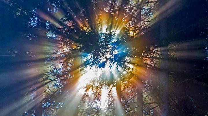 rayos-cosmicos1