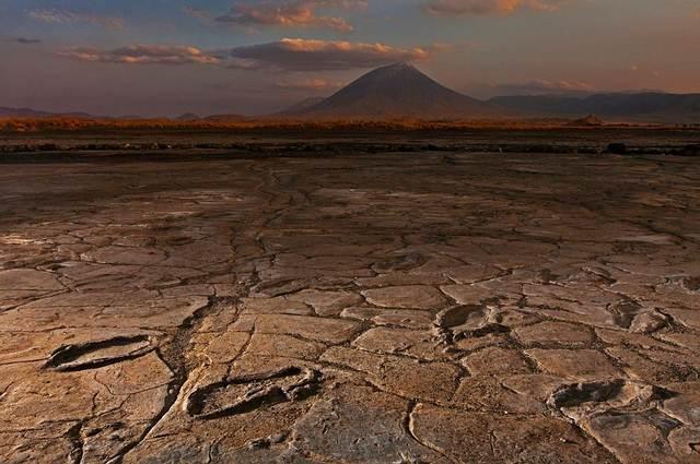 worlds-oldest-footprints