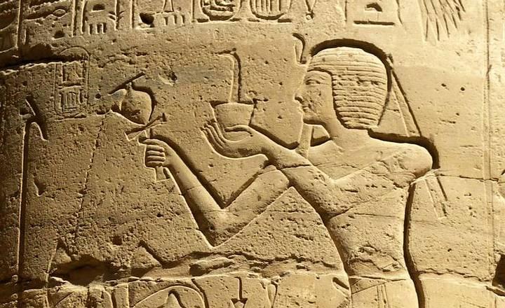 «Los primeros en otorgarle el privilegio de servir al culto divino fueron los egipcios, más de 1.500 años a.C.».