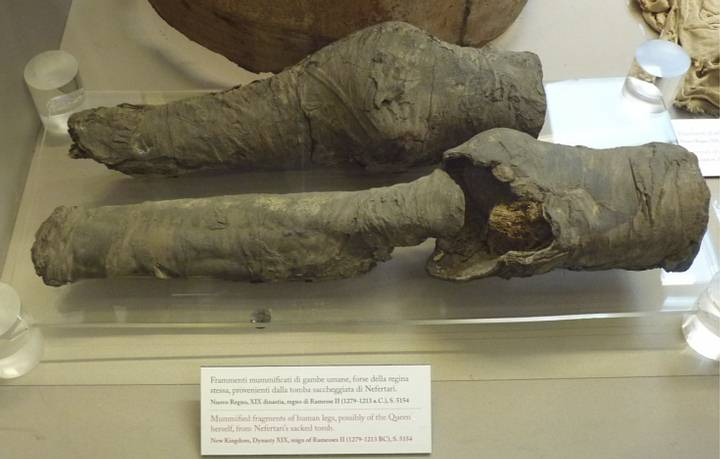 Misteriosas piernas momificadas pertenecen a la reina Nefertari