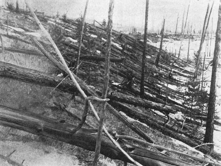 Árboles calcinados y derribados en el típico patrón circular de los bólidos de alta energía (fotografía de la 2ª expedición de Kulik, 1927).