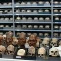 Post thumbnail of La habitación de los 10.000 cráneos ancestrales en Perú