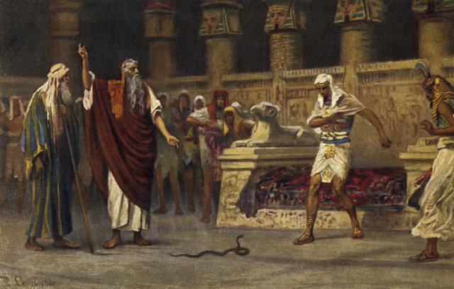 """«Habló Yahvé a Moisés y a Aarón, diciendo: """"Si el Faraón os respondiere diciendo: 'Mostrad milagro'; dirás a Aarón: 'Toma tu vara y échala delante del Faraón para que se haga culebra'""""» (Éxodo 7,8-9)."""