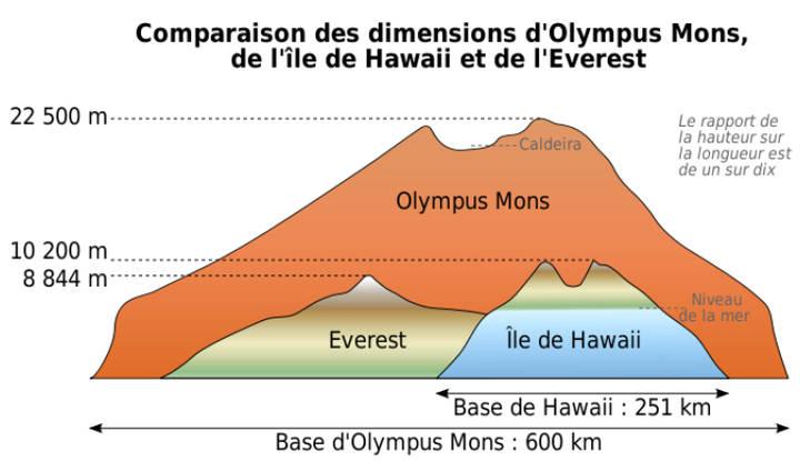 Se formó una placa de volcanes y llanuras a partir de lava que fluyó a lo largo de largas distancias, similar a la formación de las islas hawaianas. El volcán marciano más grande, Olympus Mons, tiene 27.358 metros, casi el triple de la altura del volcán más alto de la Mauna Kea, 10.058 metros desde su base marina.