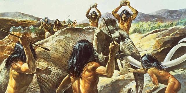 Se acepta generalizadamente que el pueblo clovis cazaba mamuts: abundan los sitios donde se han encontrado puntas clovis mezcladas con restos de mamut. Se ha sostenido la hipótesis de que la extinción del mamut fue consecuencia de la caza realizada por los clovis, pero la misma no se encuentra probada y ha sido muy controvertida.