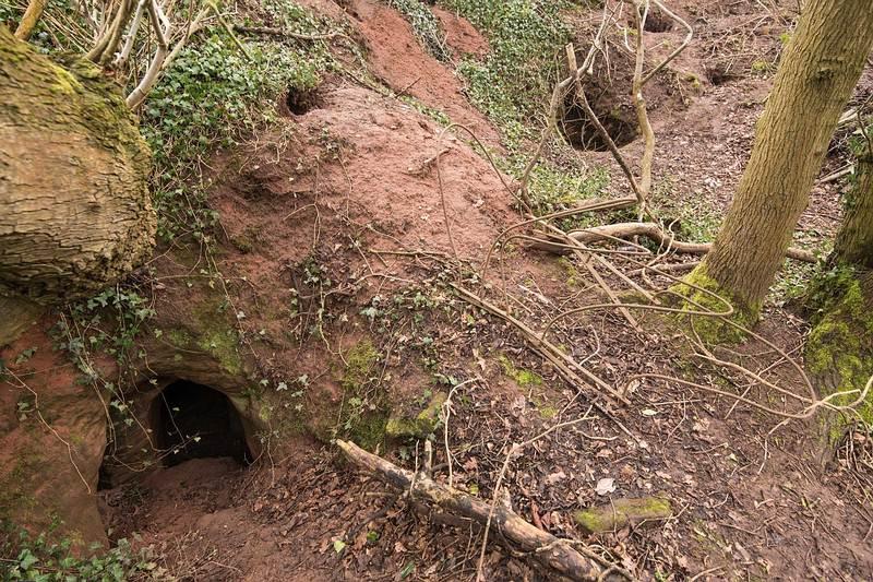 AGUJEROS EN EL PISO. Así lucían los hoyos en el suelo de Shropshire.