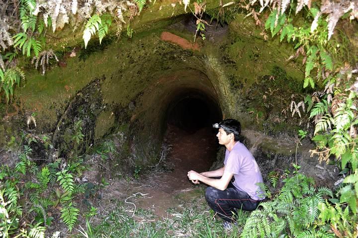 Entrada de una paleomadriguera descubierta en Brasil.