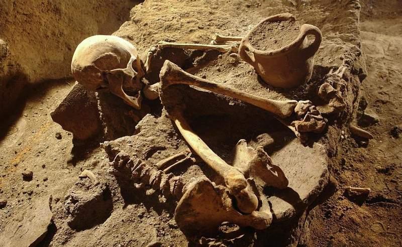 Los arqueólogos han desenterrado cerca de 60 esqueletos humanos, la mayoría completos.