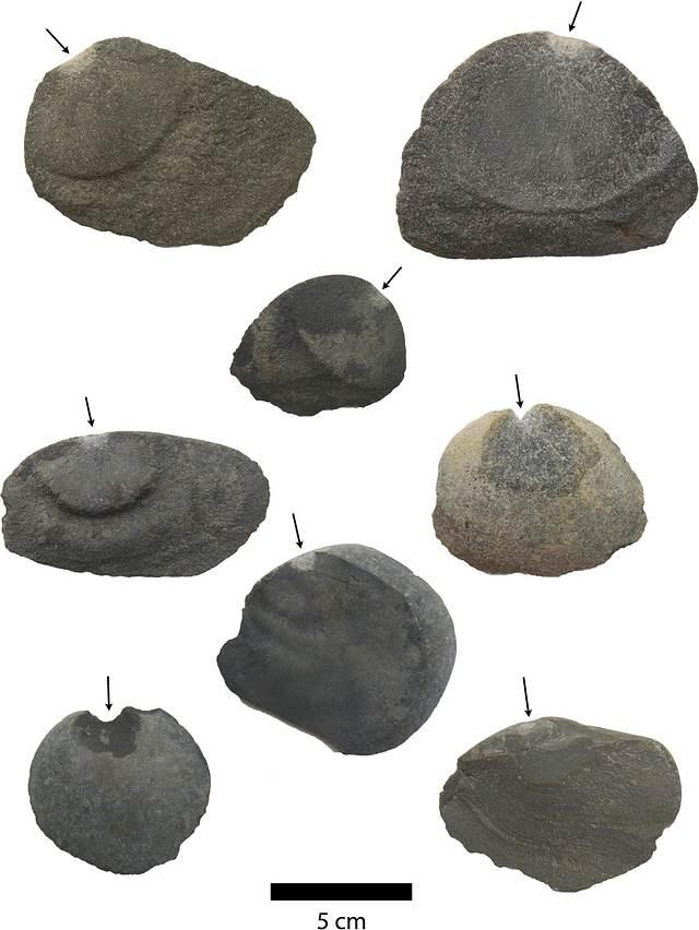 Antiguas piezas de basalto que muestran marcas y bulbos de percusión.
