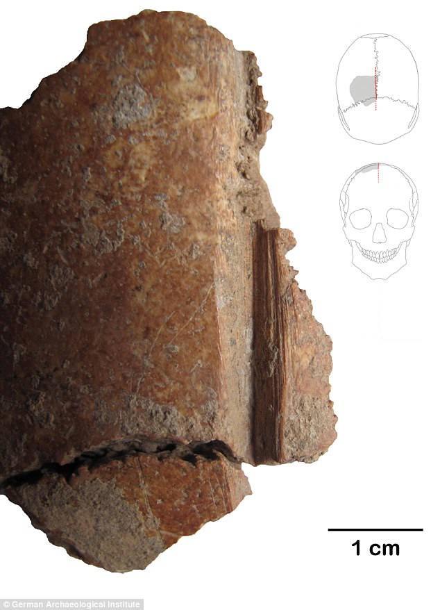 Esta imagen muestra el fragmento de uno de los cráneos con claras marcas de corte.