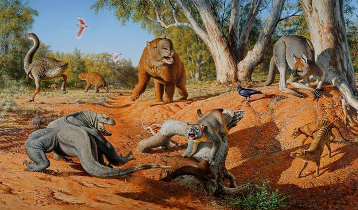 australian-megafauna
