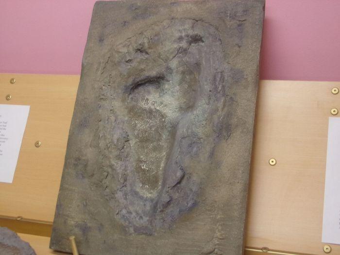 Huella humanoide expuesta en el Museo de Evidencias de la Creación.