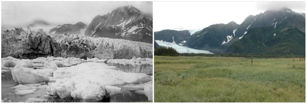 pedersen-glacier