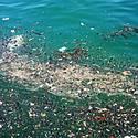 Post Thumbnail of Descubren en pleno Pacífico una nueva isla de plástico del tamaño de México