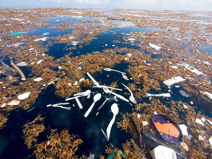 sea-of-plastic2